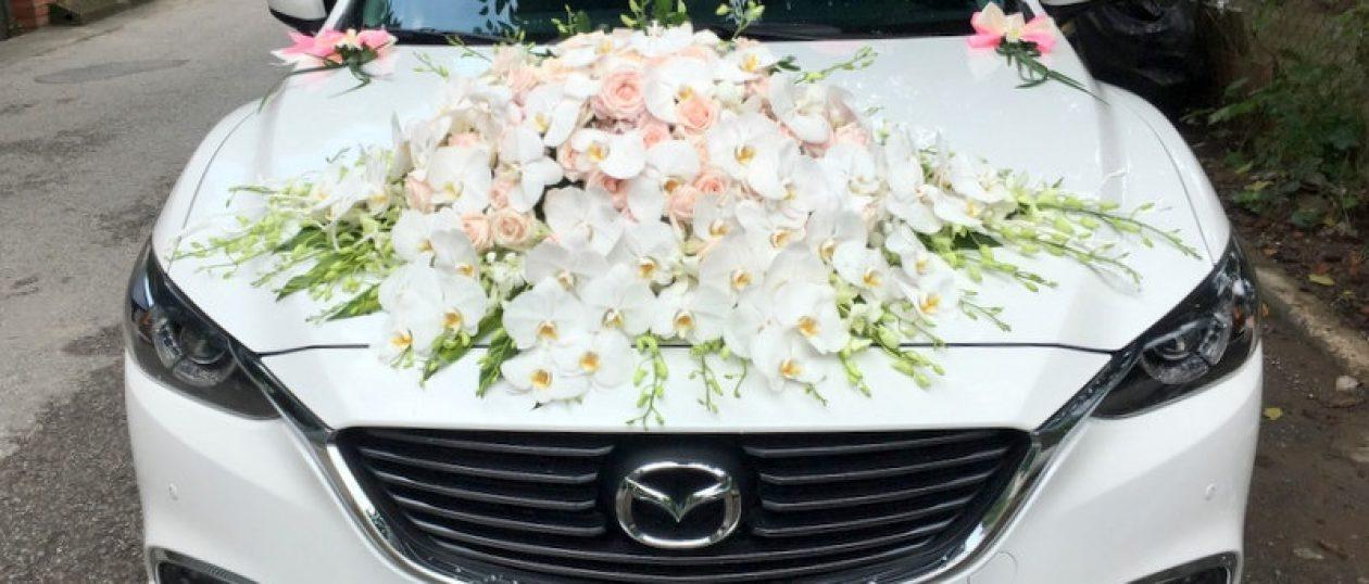 Xe cưới Mazda 6